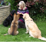 christine-with-dogs